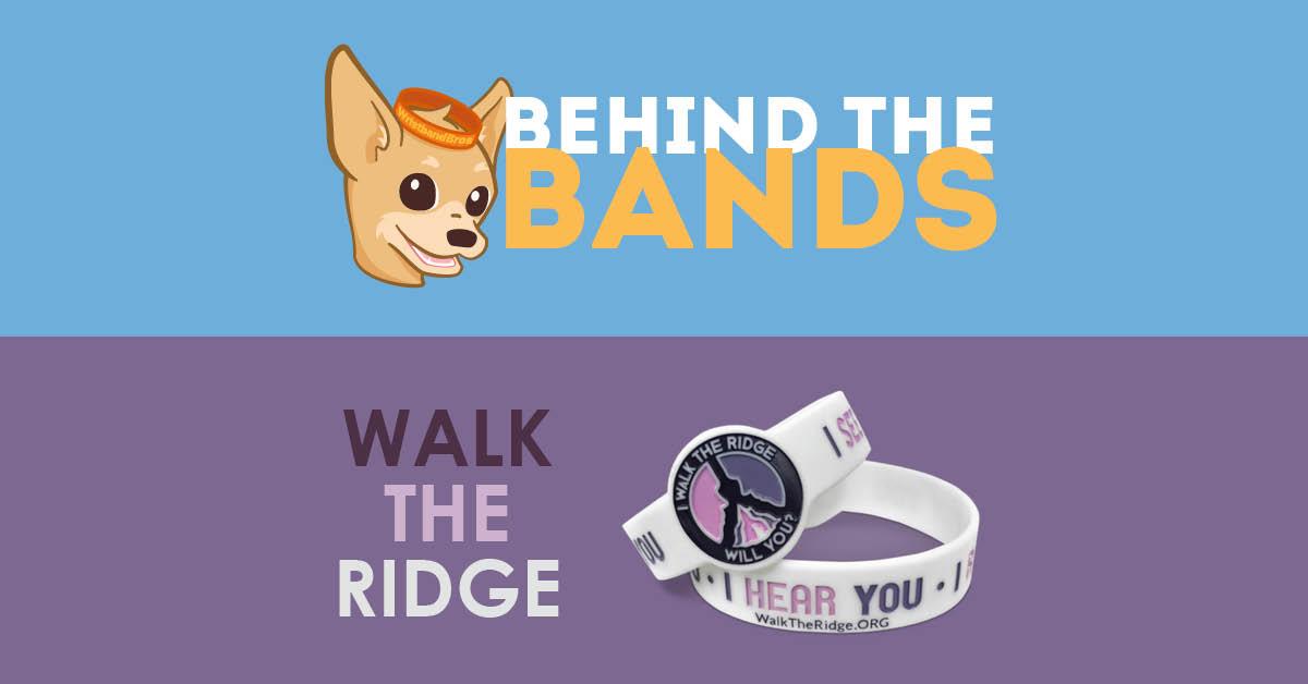 Behind the Bands: Walk the Ridge