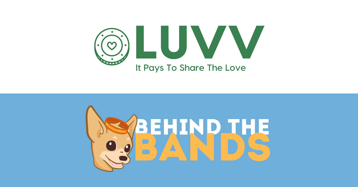 Behind the Bands - The LUVV Movement